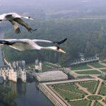 Castillos europeos desde el aire. ©BBC