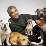 Cesar Millan el encantador de perros. ©cesarsway