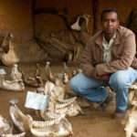 Reporter Rageh Omaar, with the remains of elephants. ©BBC