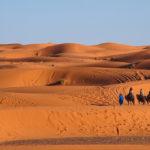 Dunas de arena en el desierto del Sahara, Marruecos. ©Shutterstock