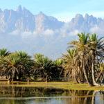 Pequeño oasis en la Isla de Socotra, Yemen. ©Shutterstock