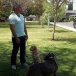 Cesar con Auggie y Jr. Cortesía - NGC/ITV Studios Ltd