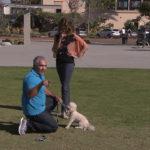 Cesar enseña a mujer cómo tratar a su perro. ©Leepson Bounds