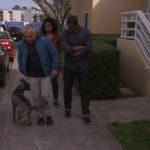Cesar lleva a Sho Nuff y sus dueños a dar un paseo. ©Leepson Bounds