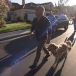 Cesar lleva a perro de paseo.©Leepson Bounds