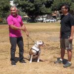 Cesar sosteniendo perros. Cortesía - NGC/ITV Studios Ltd