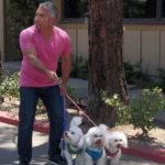 Cesar sostiene 3 perros. Cortesía - NGC/ITV Studios Ltd