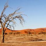 Desierto Namibia, África. ©Pixabay