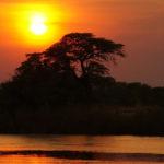 Hermoso atardecer en África. ©Pixabay