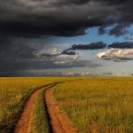 Paisaje de Kenya. ©Pixabay
