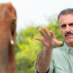 Ron Magill hablando de elefantes