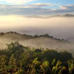 Borneo por la mañana. ©Pixabay