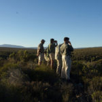 2 El equipo de Wildlife observando Themba. ©Rock Wallaby Productions
