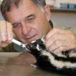 3 Johan alimentando a bebe con leche con ayuda de una jeringa en el hospital de animales. ©Rock Wallaby Productions
