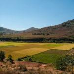Campo de arroz en Madagascar. ©Pixabay