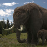 A mastodon mother and calf. Last of the Giants. © Mark MacEwen