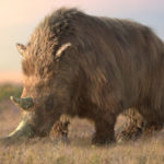 A woolly rhino. Land of the Cave Bear © Daniel Rasmussen