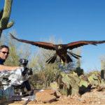 Camarógrafo Mark Payne-Gill filma el ojo de un ratón de un Harris Hawk de caza, mientras vuela. ©BBC 2014