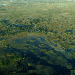 Delta del Okavango 2