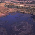 Okavango comienza a secarse