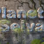 Planeta-Selva