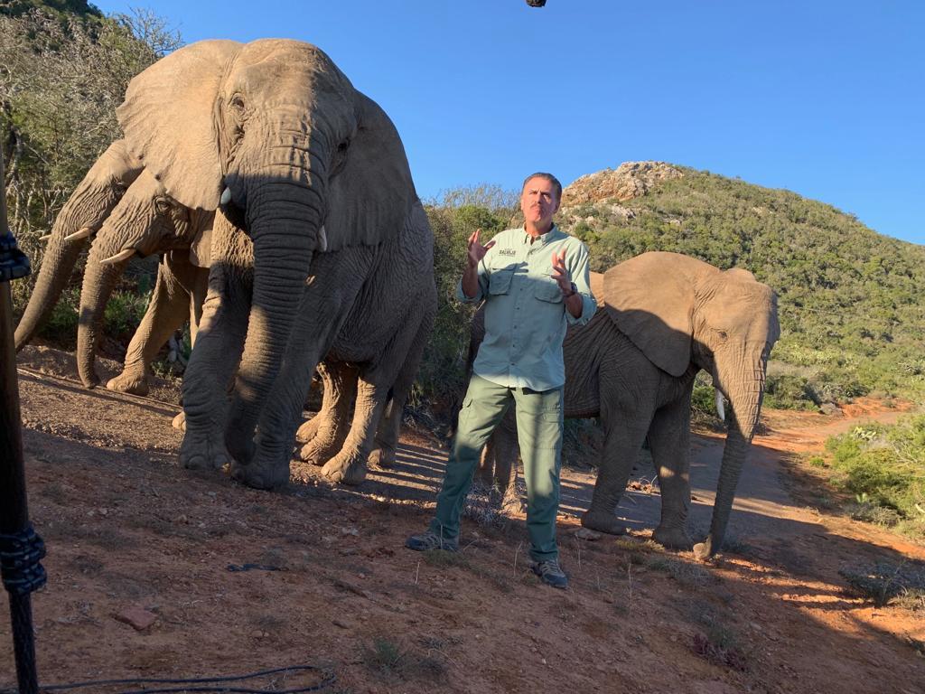 Ron Magill con sus amigos elefantes