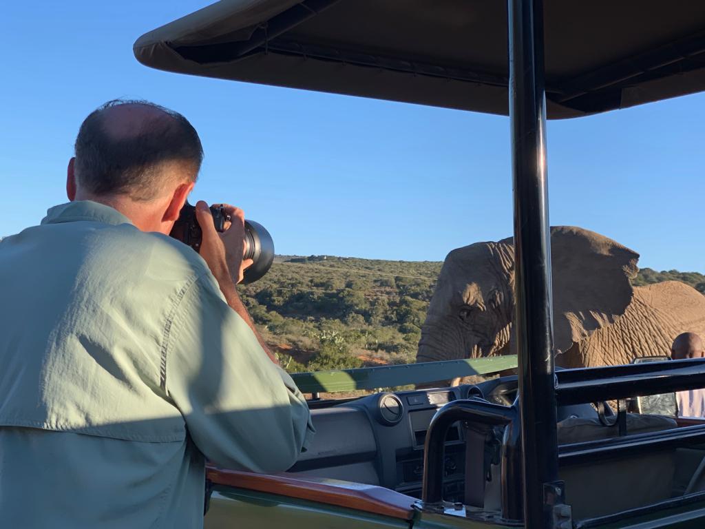 Ron toma fotos de un elefante
