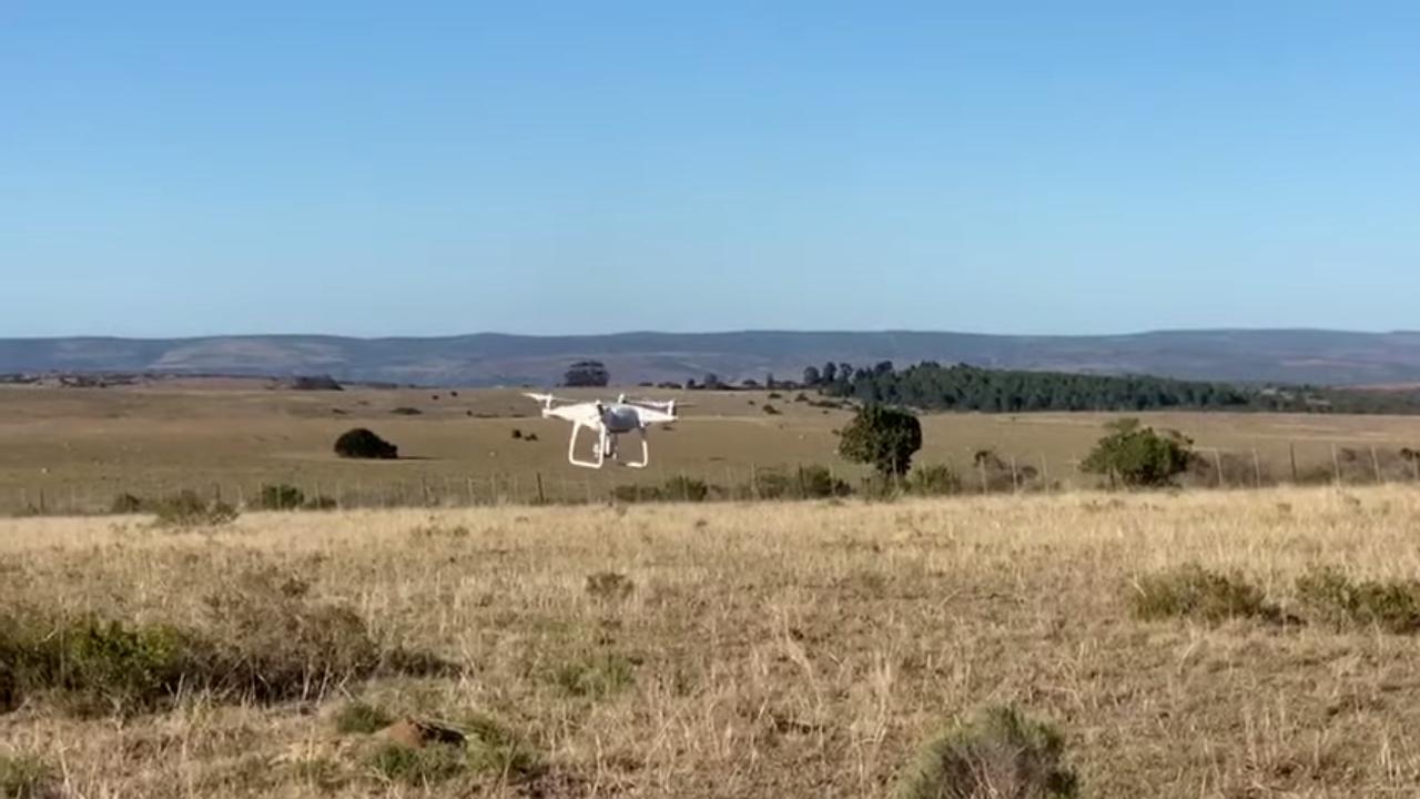 ¡Drone en acción!