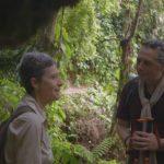 Peter Eeckhout en la selva