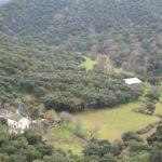 Valle de Quejigo ©Acajú Comunicación Ambiental, S. L
