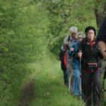 13 Adultos mayores practicando senderismo Signos Vitales