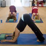 Práctica de yoga - El Doctor en Casa