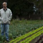 Cambio Ambiental - Alimentación